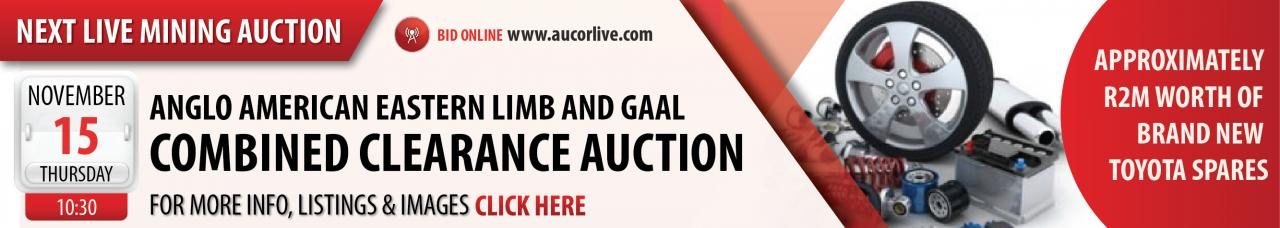 Anglo American Platinum Eastern Limb & GAAL Combined Clearance Auction