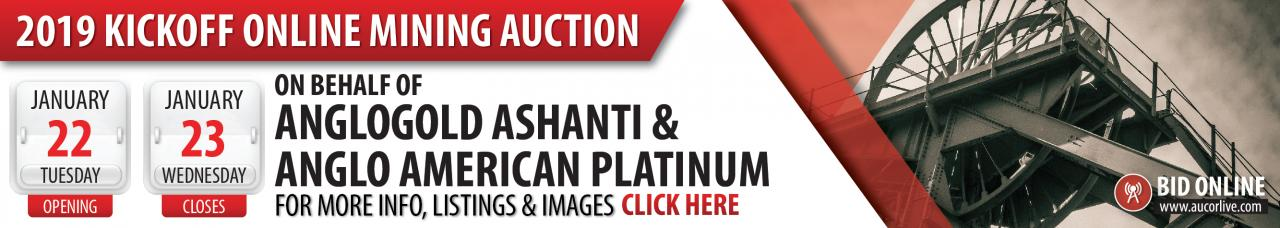 Anglo Gold Ashanti & Anglo American Platinum Online Auction